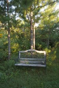 Skogstjarna bench